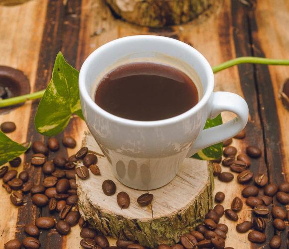 Cafe Donama Cooagronevada